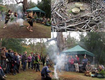 Restoring Indigenous Cultural Practices in Bunjil Reserve